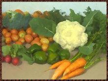 ירקות גינה אורגני